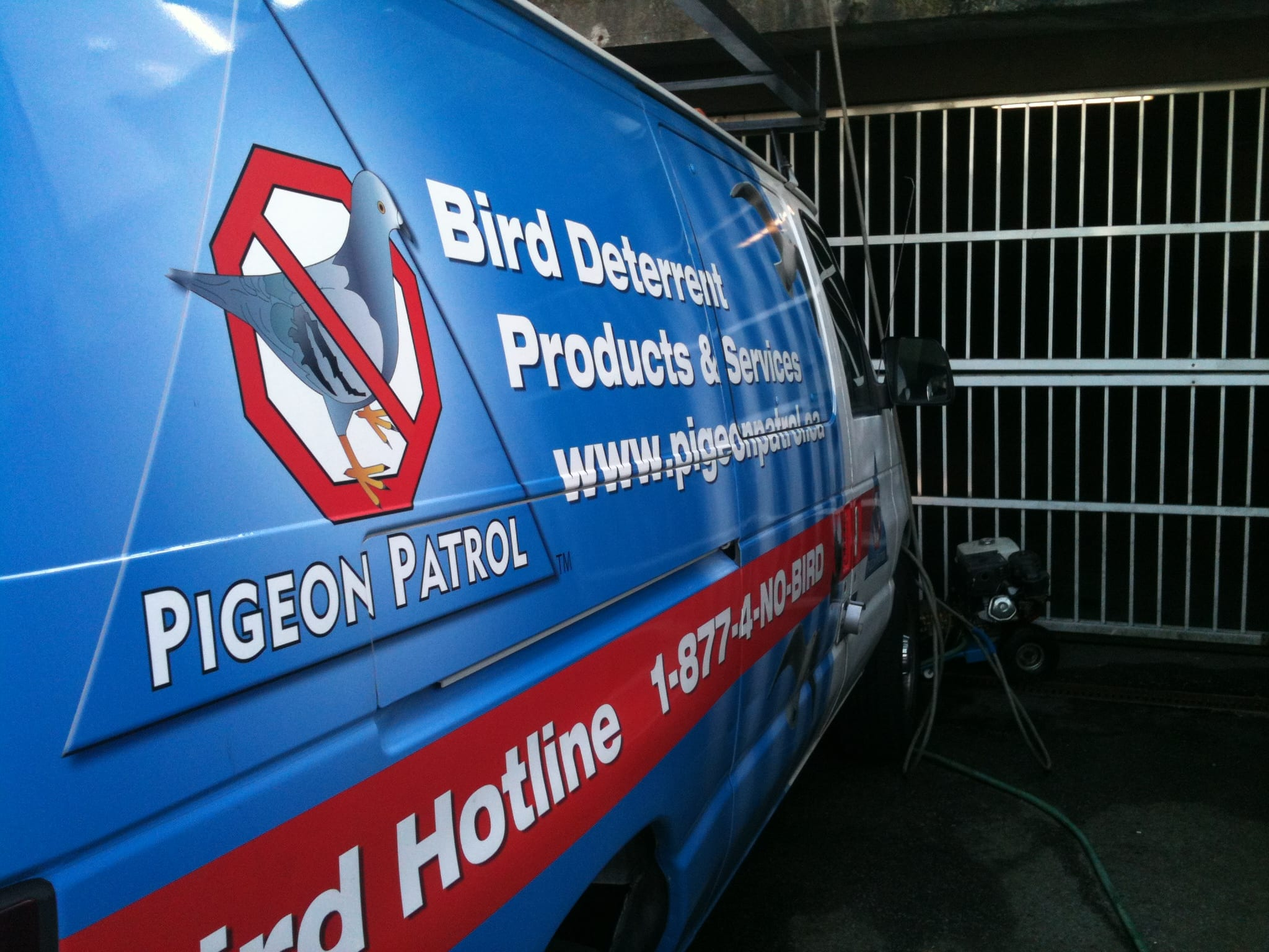 Bird Deterrent In The News Pigeon Patrol Canada Bird