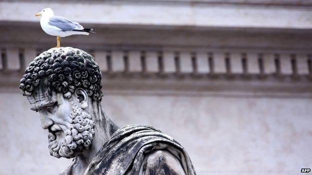 Bird Deterrent In The News Pigeon Patrol Canada Bird