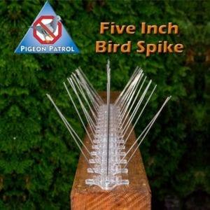 ultra-flex bird spikes