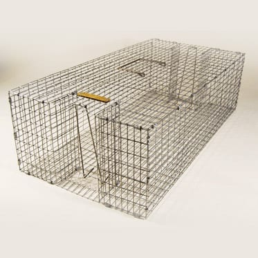 Pigeon-Trapping-Cage