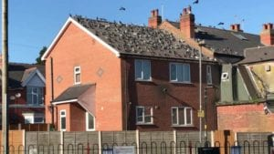large flock of pigeons perched upon a derelict house, causing issues and health hazards