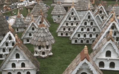 What Are Dovecotes?